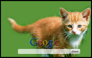 Cute Kitten Google Homepage