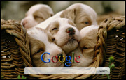 Cute Puppies Google Homepage