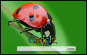 Lady Bug Google Homepage