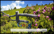 Old Country Fence Google Homepage