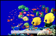 Tropical Fish Google Homepage